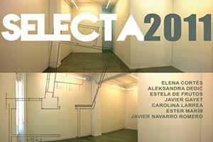 Selecta 2010-11
